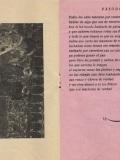 1970.-Los-invitados-de-la-Casa-los-Martínez-Pag-4