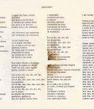 1980.-Los-Simios-Pag-11-