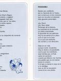 2001.-Mis-Castanitas-Pag-7-8