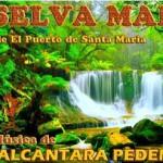 La Selva Madre  – Comunicado